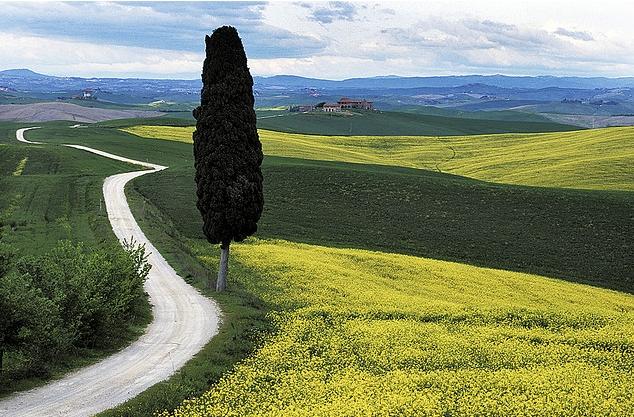 paesaggio-d.carradori